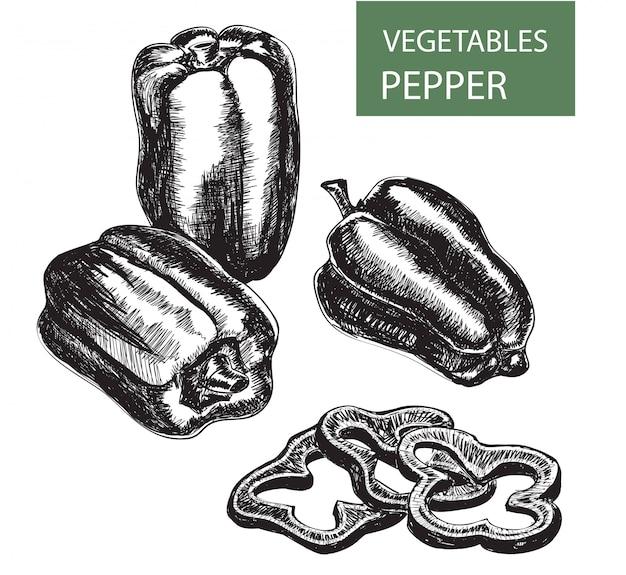 Conjunto de desenho de pimenta