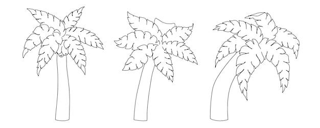 Conjunto de desenho linear de palmeiras doodle