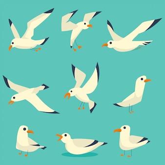 Conjunto de desenhos animados de aves de gaivotas