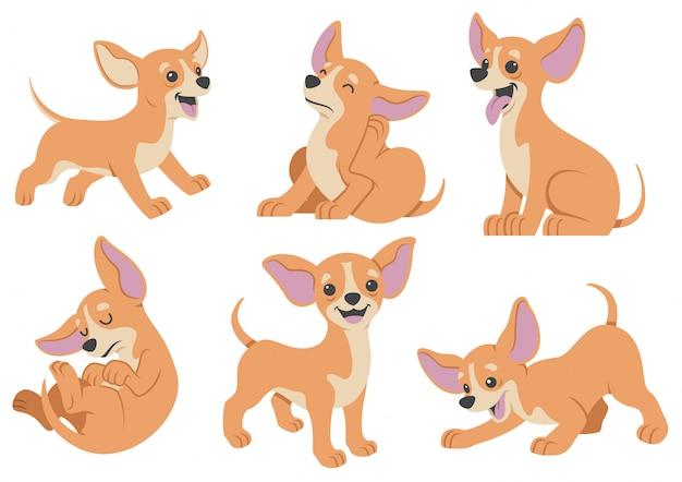 Conjunto de desenhos animados de cachorro chihuahua