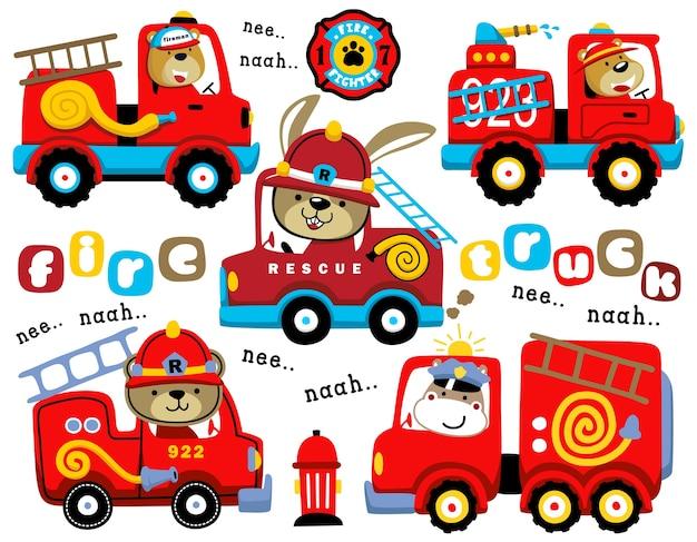 Conjunto de desenhos animados de caminhões de bombeiros com motorista engraçado
