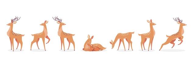 Conjunto de desenhos animados de cervos