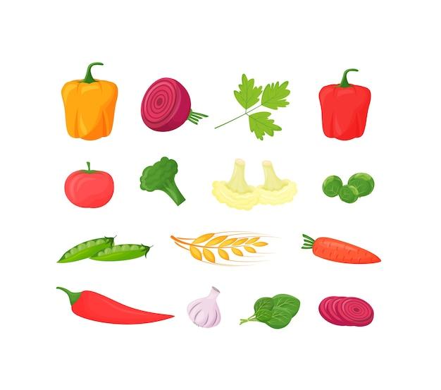 Conjunto de desenhos animados de legumes frescos. alimentos saudáveis pimenta, tomate e brócolis. couve-flor e beterraba orgânica produzem objetos de cor lisa. comida de cenoura crua isolada no fundo branco