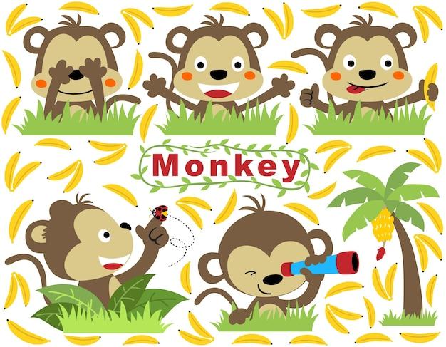 Conjunto de desenhos animados de macaco com bananas