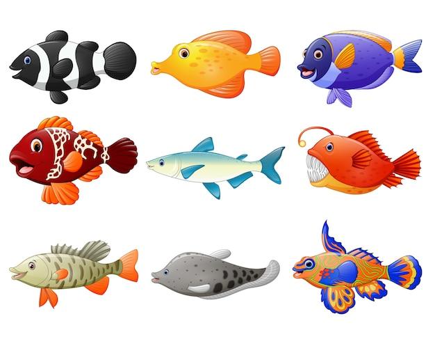 Conjunto de desenhos animados de peixe