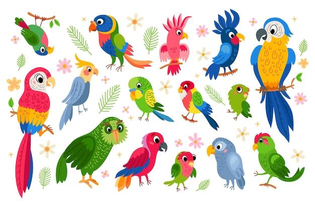 Conjunto de desenhos animados de personagens vetoriais de papagaios tropicais