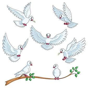 Conjunto de desenhos animados de pomba