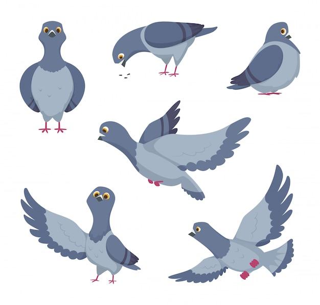 Conjunto de desenhos animados de pombos engraçados. ilustrações de pássaros