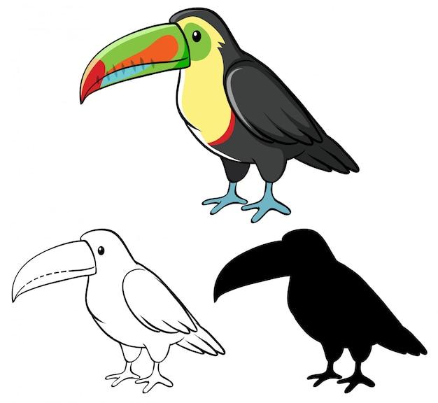 Conjunto de desenhos animados de tucano