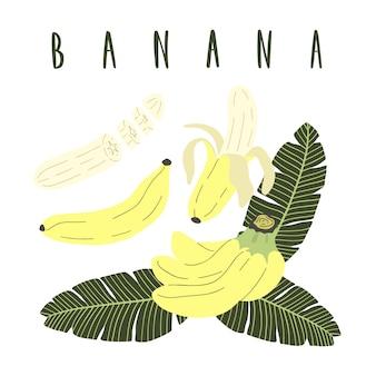 Conjunto de desenhos animados mão desenhada de banana.