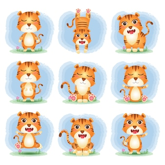 Conjunto de desenhos animados vetor de tigre fofo
