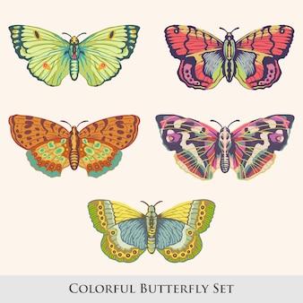 Conjunto de design de borboleta e mariposa linda estilo vintage