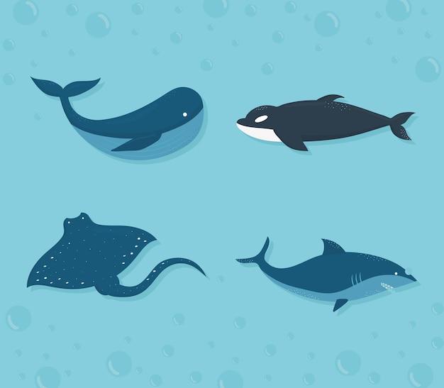 Conjunto de design de ilustração de ícones de vida marinha