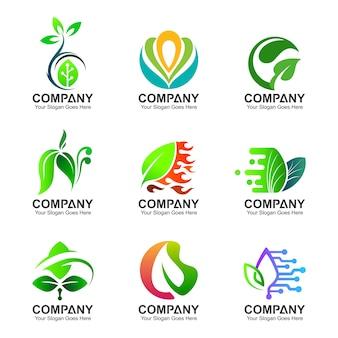 Conjunto de design de logotipo de folha