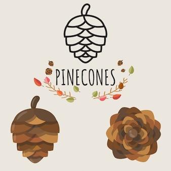 Conjunto de design de pinhas.