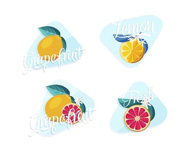 Conjunto de design de vetor de citrinos