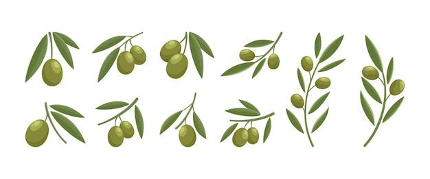 Conjunto de design moderno de logotipo verde-oliva