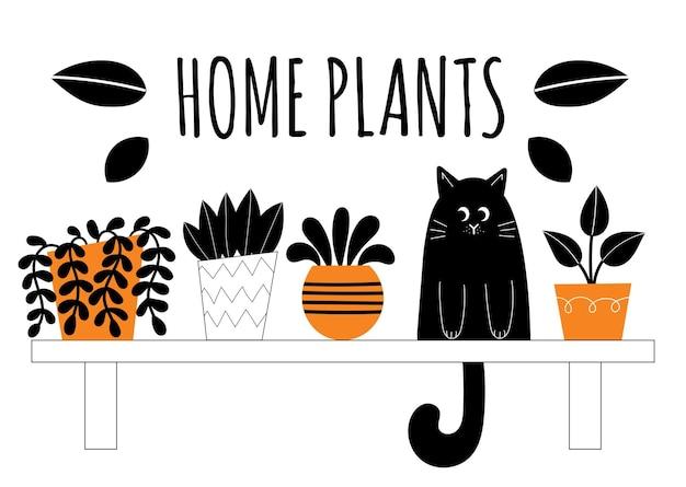 Conjunto de dez plantas de interior de vetor. flores em vasos nas prateleiras. plantas de casa estilizadas. decoração e interior da casa. suculentas, monstera, cactos. ilustração isolada no fundo branco.