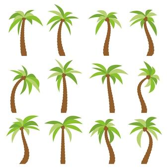 Conjunto de dezesseis palmeiras diferentes dos desenhos animados, isoladas no fundo branco. ilustração vetorial