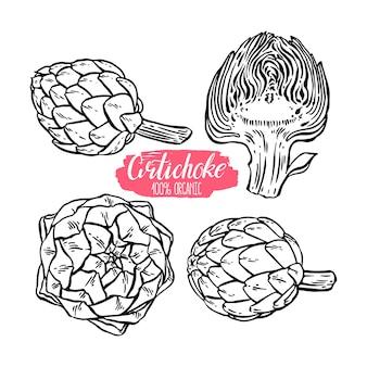 Conjunto de diferentes alcachofras de esboço. ilustração desenhada à mão