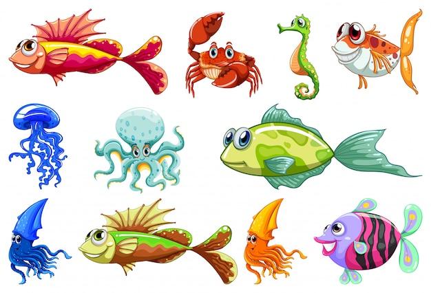 Conjunto de diferentes animais dos desenhos animados estilo