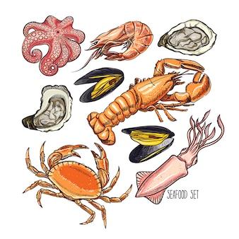 Conjunto de diferentes animais marinhos