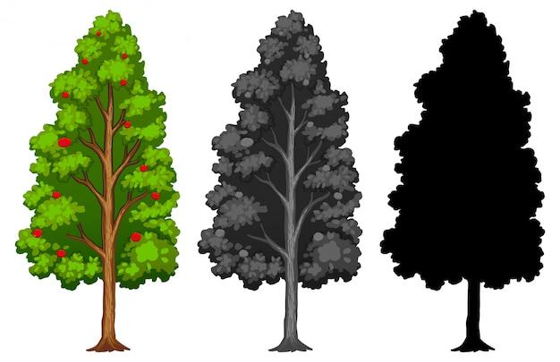 Conjunto de diferentes árvores com estilo