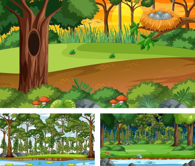 Conjunto de diferentes cenas horizontais de floresta