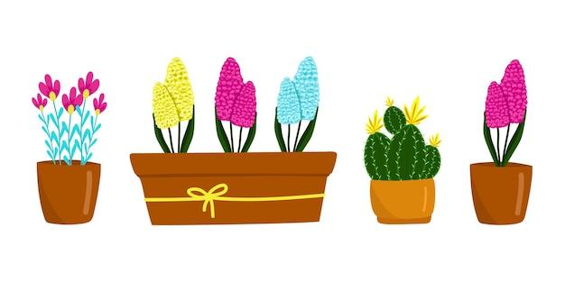 Conjunto de diferentes flores e plantas de casa ilustração em vetor cactus hyacinthus