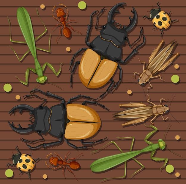 Conjunto de diferentes insetos em papel de parede de madeira