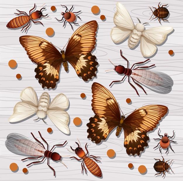 Conjunto de diferentes insetos no fundo branco do papel de parede de madeira