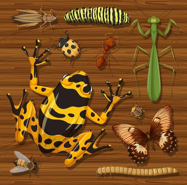 Conjunto de diferentes insetos no fundo do papel de parede de madeira