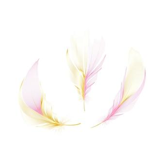 Conjunto de diferentes penas giradas fofas caindo sobre um fundo branco