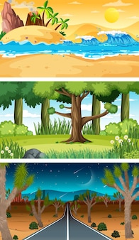 Conjunto de diferentes tipos de cenas horizontais de floresta