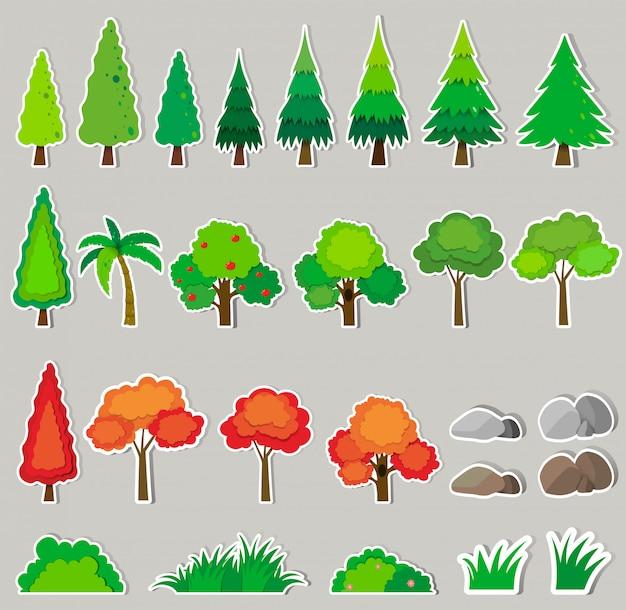 Conjunto de diferentes tipos de plantas