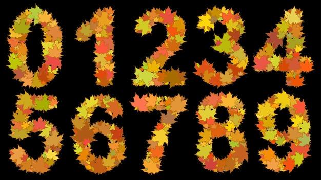 Conjunto de dígitos que consiste em grandes folhas amarelas de outono em fundo preto