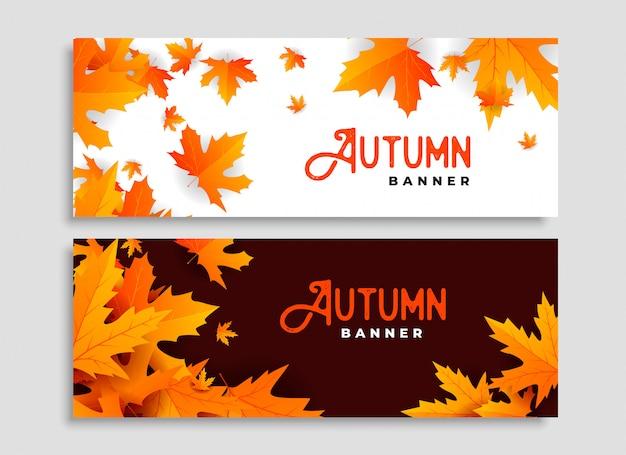 Conjunto de dois design de banners sazonais de folhas de outono