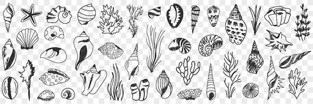 Conjunto de doodle de criaturas do mundo subaquático
