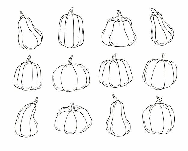 Conjunto de doodle de desenho animado de abóbora em preto e branco. ilustração em vetor fofa de contorno isolada no fundo