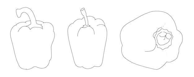 Conjunto de doodle de esboço linear de pimentão