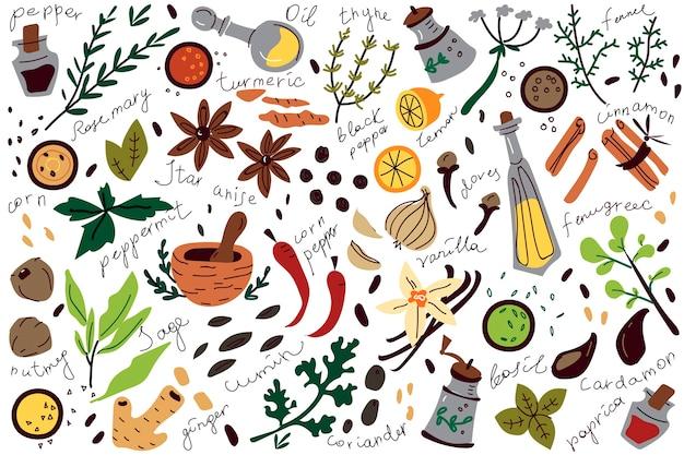 Conjunto de doodle de especiarias.