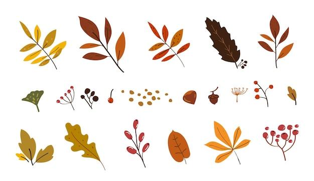 Conjunto de doodle de folhas de outono desenho de folhas de outono elementos de esboço de outono