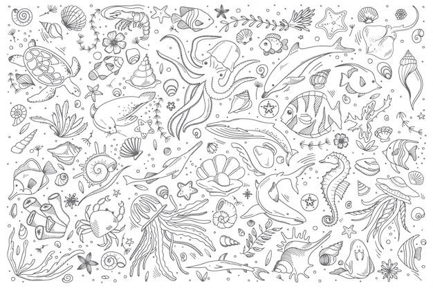 Conjunto de doodle de vida marinha
