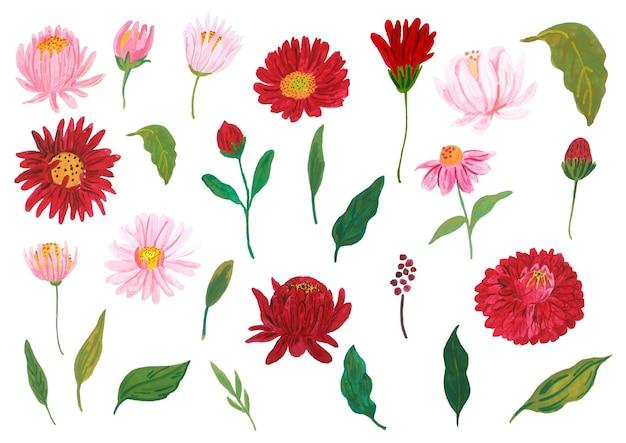 Conjunto de elemento de flor desenhado à mão