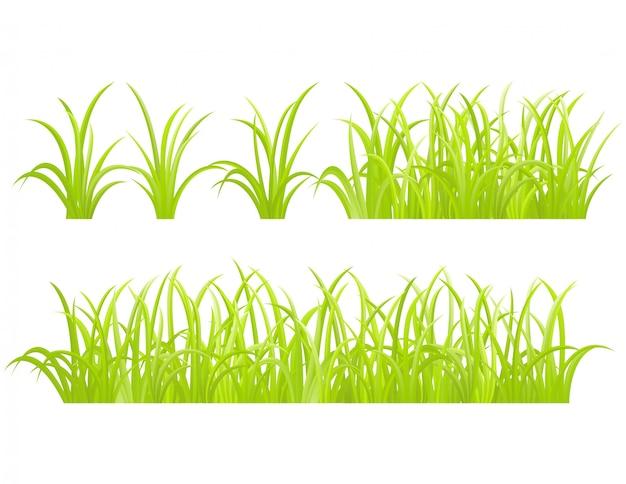 Conjunto de elemento de grama verde