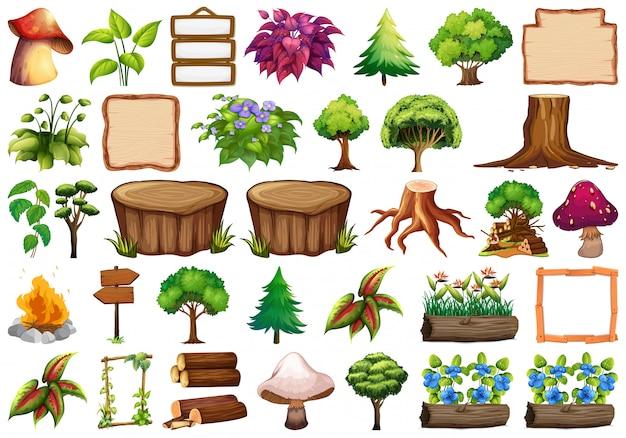 Conjunto de elemento de natureza para decoração