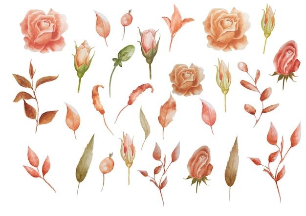 Conjunto de elemento floral de terracota marrom