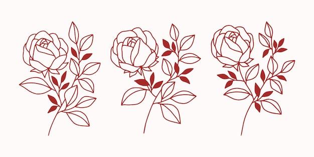 Conjunto de elementos botânicos vintage de flor e folha rosa para marca de beleza ou logotipo