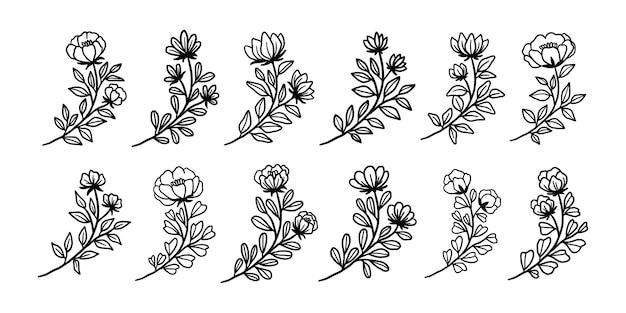 Conjunto de elementos botânicos vintage de flores e folhas