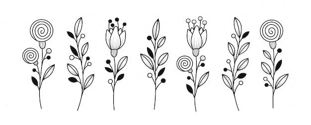 Conjunto de elementos botânicos